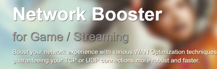 How Does Mudfish VPN work?